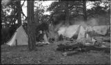 Cooking in camp, New Mexico