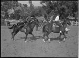 Junior rodeo riders, New Mexico