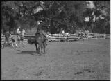 Riders at rodeo, New Mexico