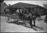 Augustine Torrez drives a mule team and wagon, New Mexico