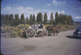 Family in horse drawn wagon, New Mexico