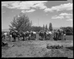 Los Alamos Ranch School students making camp near Los Alamos, New Mexico