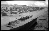 """20 mule-hitch to grader North of Tesuque on Taos Highway, New Mexico"""