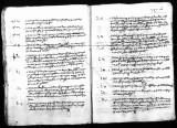 Juan del Camino's testimony to interrogation by Gaspar Perez concerning Viceroy Antonio de...
