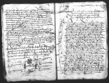 A copy by Antonio de Turcios (escribano mayor) of a cedula by the Viceroy of New Spain, Antonio de...