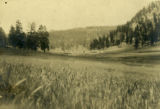 Bletcher Ranch in Jemez 1899