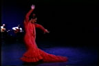 13th Annual Festival Flamenco Internacional @ Rodey Theater