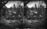 """Hagar's Sawmill, Arroyo de Las Torreones, New Mexico, October 1880"""