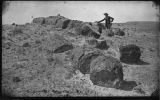 """View in Petrified Forest, Arizona, Chalcedony Chief"""