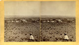 View of Albuquerque from foothills looking northwest, New Mexico