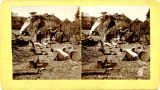 Apaches in camp, New Mexico