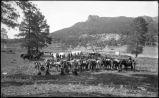 """Arizona Prospectors, Whiskey Creek near Flagstaff, Arizona"""