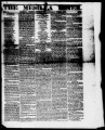 The Mesilla Times 1860-06-09
