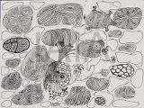 Untitled (Abstract Pod Shapes with Turtles and Bird)